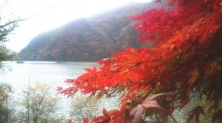20111103hiroseko1.jpg
