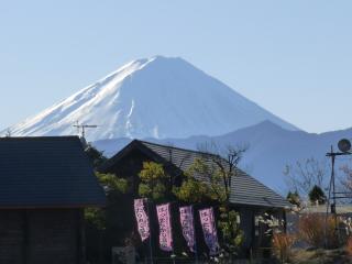 20111204hottarakashi_5.jpg