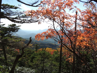 2012h241010_yume5.jpg