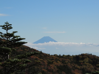 2012h241010_yume7.jpg