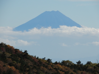 2012h241010_yume8.jpg