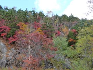 2012h241020_yume2.jpg