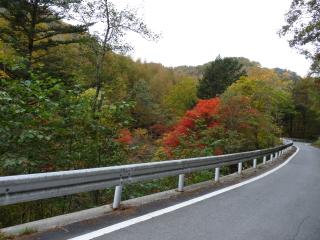 2012h241020_yume4.jpg
