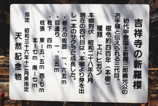 2019h31kichijouji-2.jpg