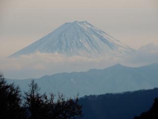 fujisan-shiogaira-1.jpg