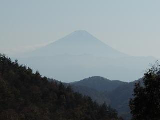 mizugamori2016h281106-1.jpg