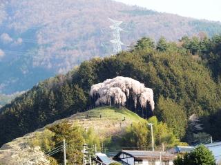 okkazuma2014h2604012_1.jpg