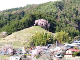 okkazuma2016h280405_1.jpg