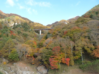 r441yanagisawa-4.jpg