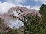 2009h21-0406-okkazuma-1.jpg