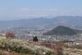 momo-nakahagihara2020r0404-320-3.jpg
