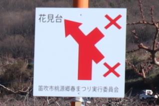 momo2019h310404yajirushi-4.jpg