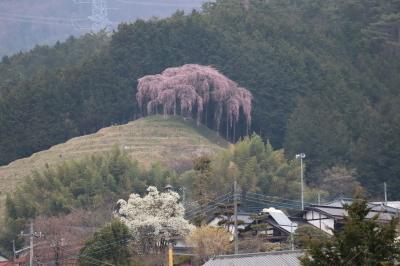 mtx-okkazuma2021r30325-1.jpg