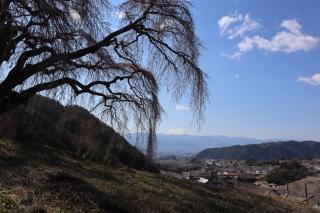 okkazuma2019h310403-3.jpg