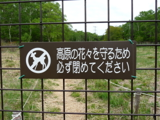 rengetutuji2018h300528-7.jpg